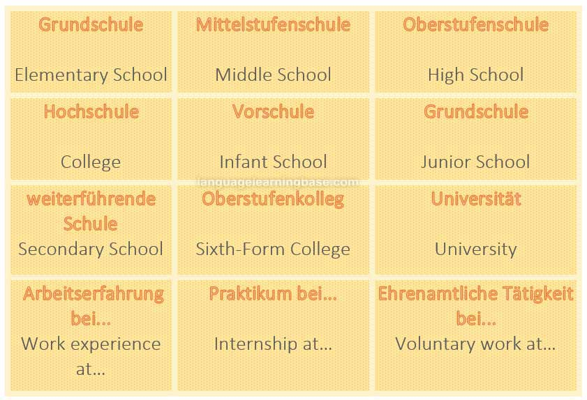 Der Lebenslauf – curriculum vitae. CV vocabulary. - learn German ...