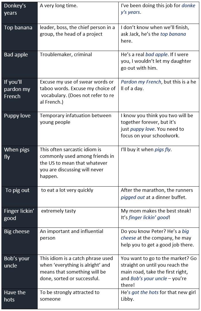 The Funniest English Idioms - learn English,idioms,english