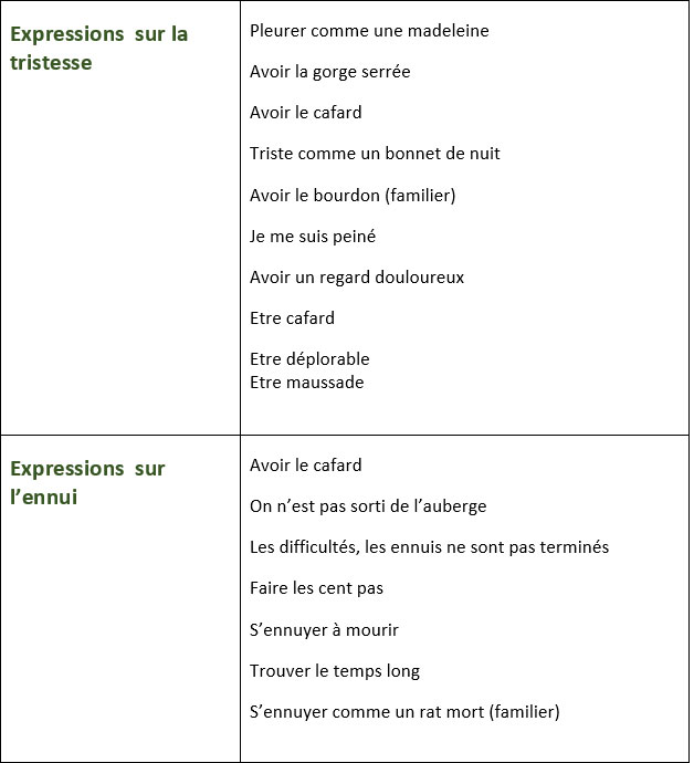 Liste D Expressions Pour Exprimer La Joie La Peur La Tristesse Et L Ennui Learn French Vocabulary Communication Francais French